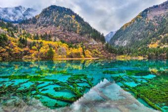 Five Flower Lake in the Jiuzhaigou Valley, China.