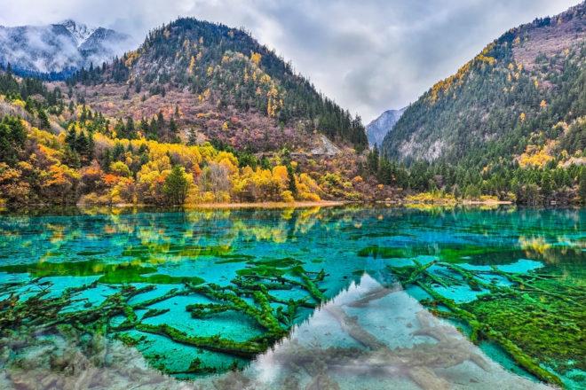 Five Flower Lake in Jiuzhaigou Valley, China.
