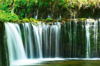 Shiraito Falls in the Shizuoka prefecture, Japan.
