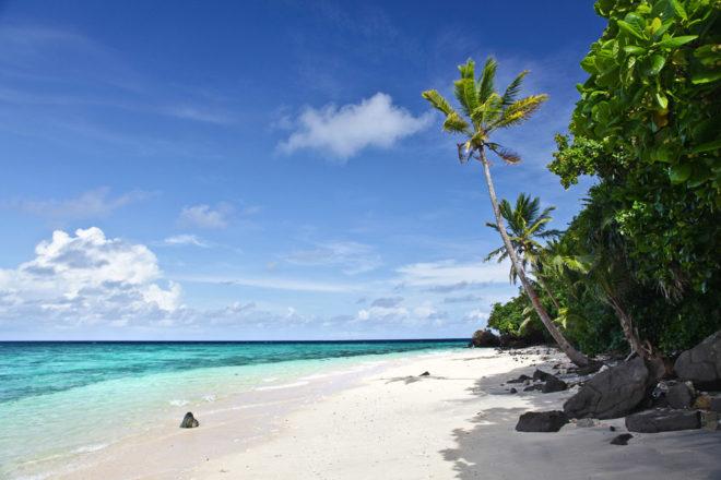 The pristine beach at Royal Davui, Fiji.