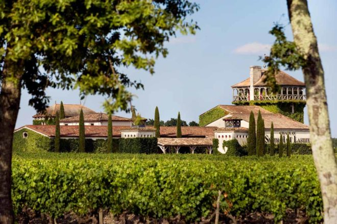 Leafy green surrounds of Château Smith Haut Lafitte