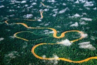 Manu Peru wildlife adventure